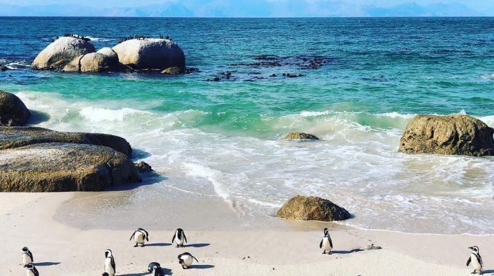 Foto 16 posti bellissimi in Africa