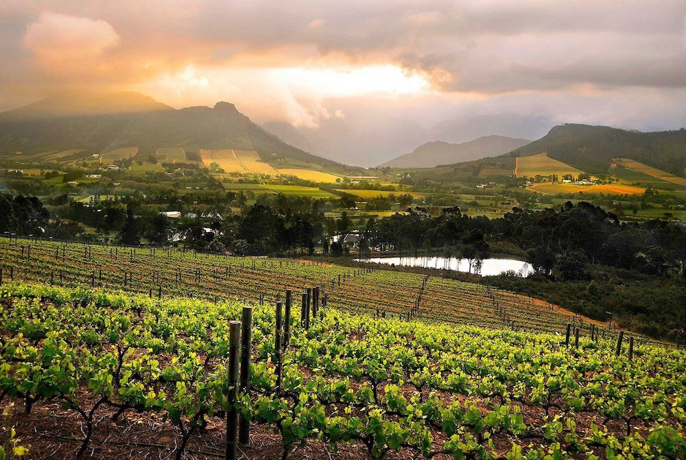 Sudafrica: 10 esperienze da fare a Cape Town