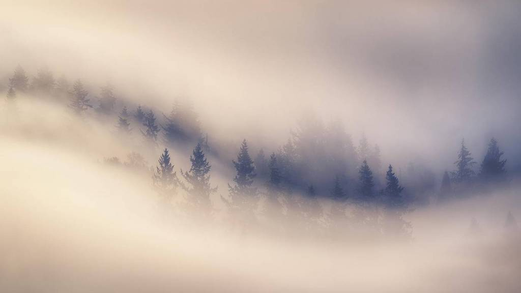 Le più belle foto di Natura: Landscape Photographer of the Year