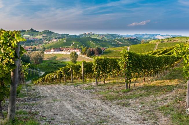 Il paesaggio del Roero, in Piemonte.