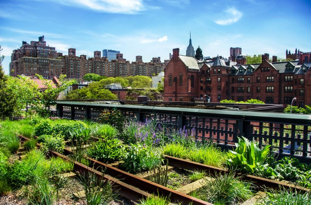 New York, cosa vedere girando la High Line