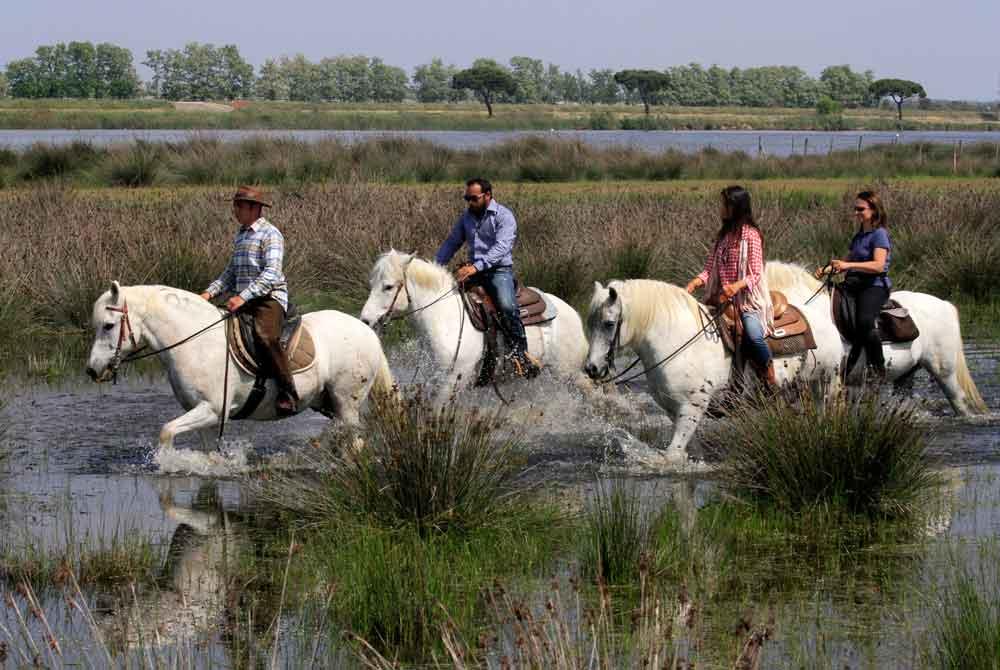 Comacchio e i suoi lidi: il fascino del Delta del Po