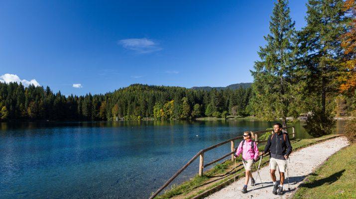 Foto In cammino lungo l'Alpe Adria Trail