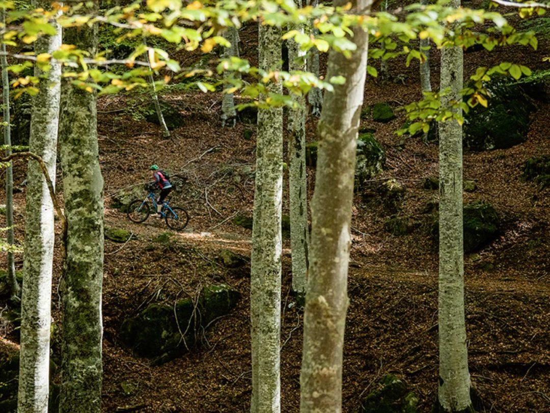 In mountain bike, dalla montagna al mare