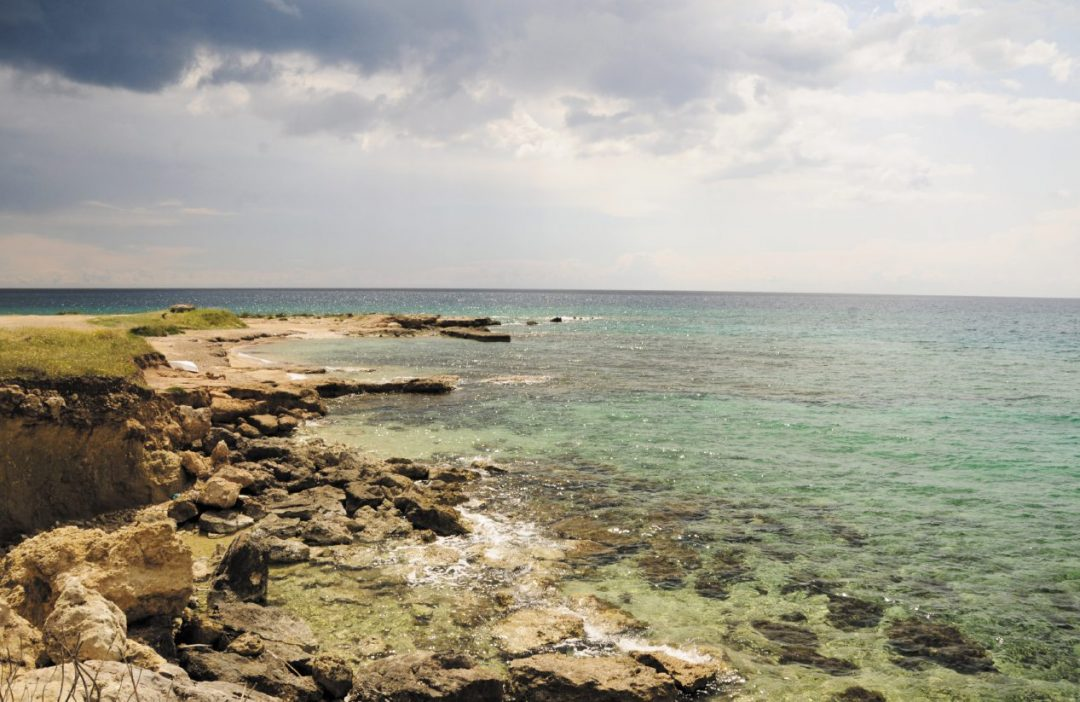 Ai confini del Salento, spiagge e torri