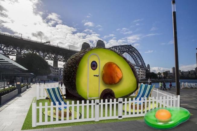 avocado hotel