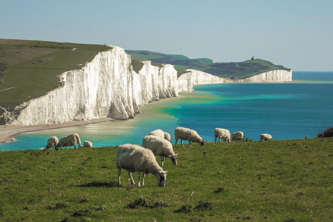 Costa sud dell'Inghilterra, a tutta natura