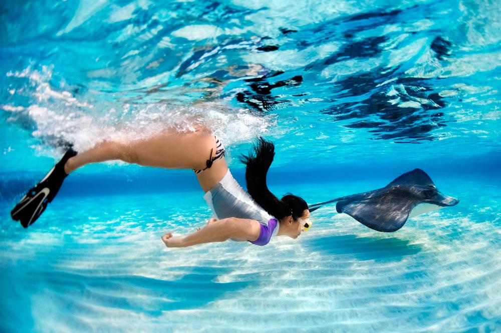20 fondali spettacolari dove fare diving e snorkeling