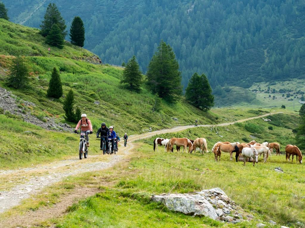 Oltre 600 chilometri di sentieri tracciati ad alta e bassa quota attendono appassionati di bike e ebike. Photo credit Fabio Borga