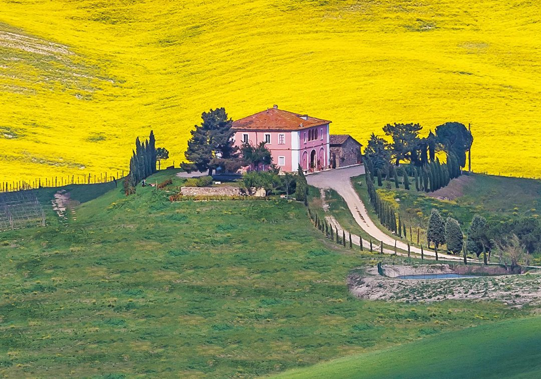 Un podere vicino a Montalcino, in Val d'Orcia, Toscana. Foto: Giacomo Fè