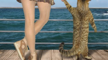 Girl and her cat on the pier