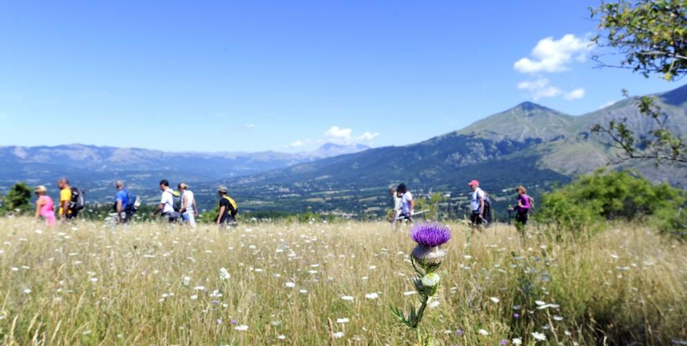 Festival delle Valli Reatine: l'avventura continua