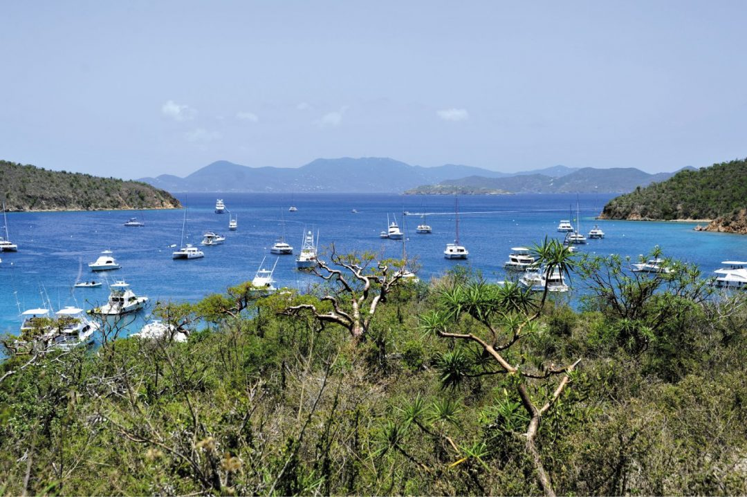 British Virgin Islands, la rinascita verde