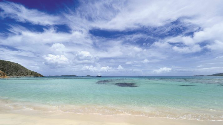 Foto British Virgin Islands, la rinascita verde