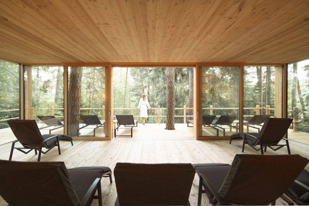Dormire nel bosco: gli hotel dove immergersi nella natura