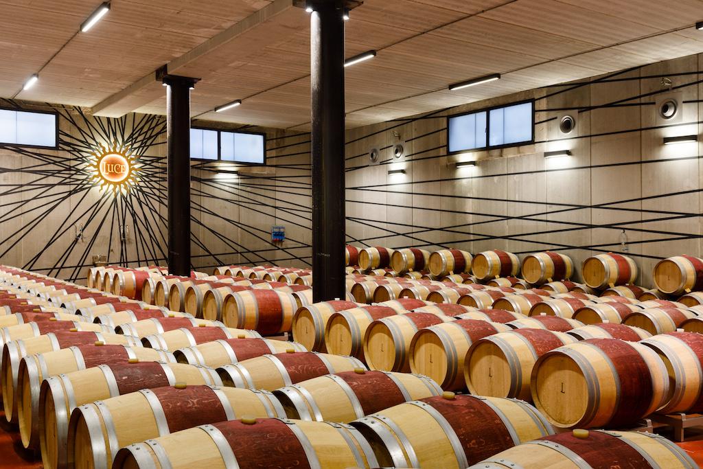 """La barricaia con le quattro le tipologie di vino prodotto: """"Luce"""", """"Lux Vitis"""" """"Lucente"""" e """"Luce Brunello""""."""