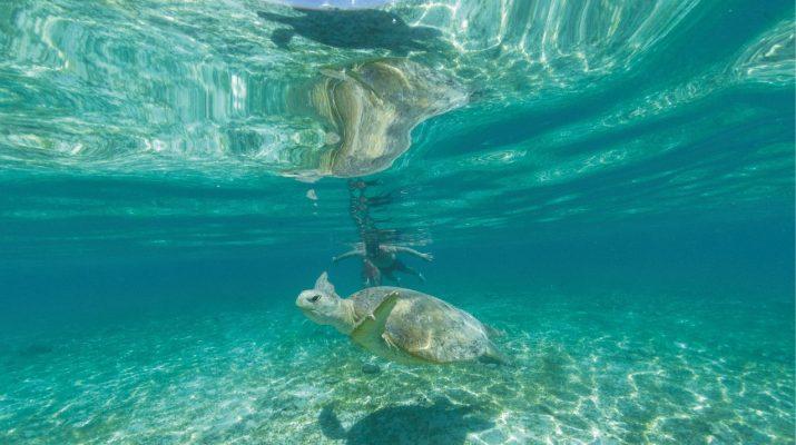 Foto Nosy Be: Isola resort, in un arcipelago tropicale