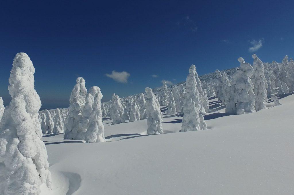I mostri di neve sul Monte Zao, località sciistica del Tohoku, in Giappone