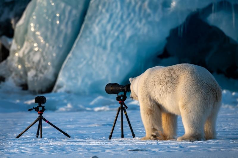 Siena International Photo Awards: i vincitori