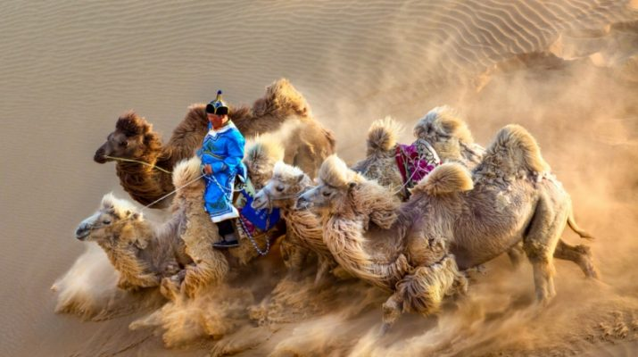 Foto Siena International Photo Awards: i vincitori