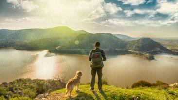In viaggio con il cane, tra trekking nei parchi e crociere tra i fiordi