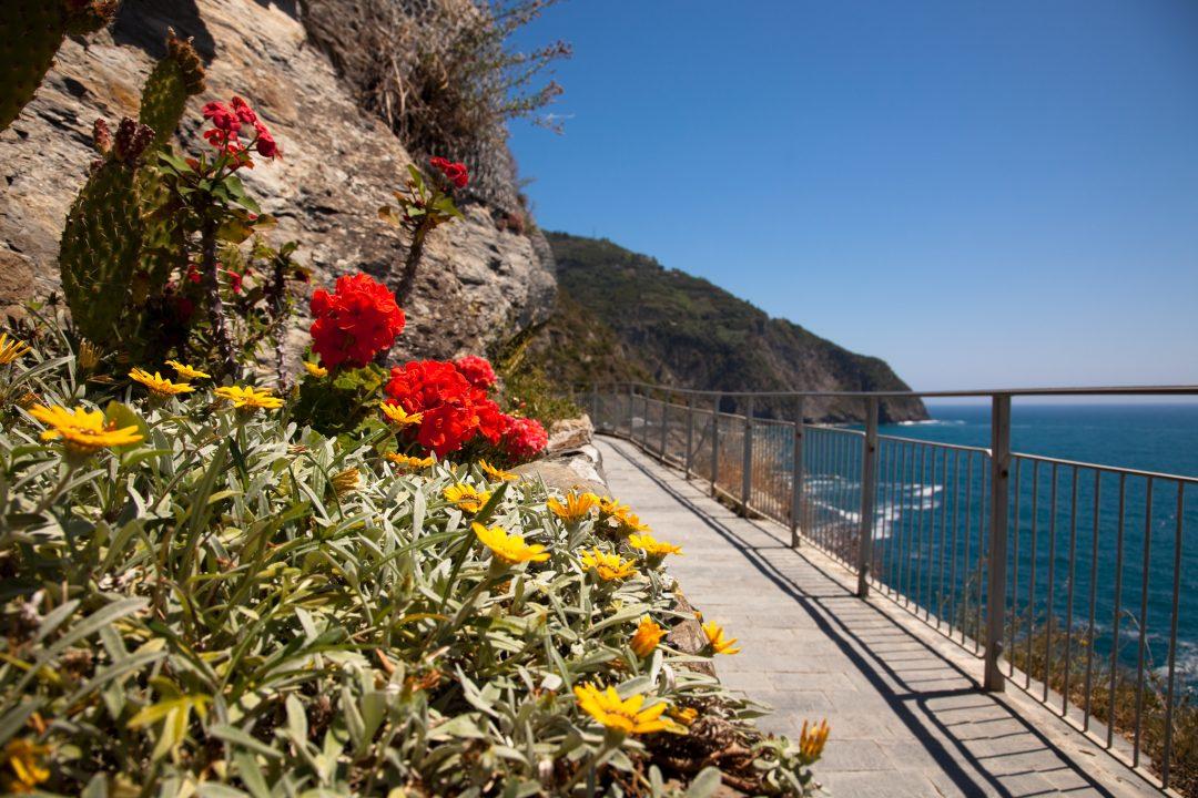 Sentiero Azzurro, tra Vernazza e Monterosso