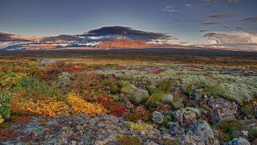 parchi europei insoliti: Parco Nazionale del Þingvellir, Islanda