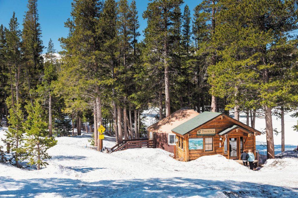 Le casette colorate in mezzo al bosco del Tamarack Lodge, a Mammoth Lakes. Fuori dall'uscio corre la pista di fondo.
