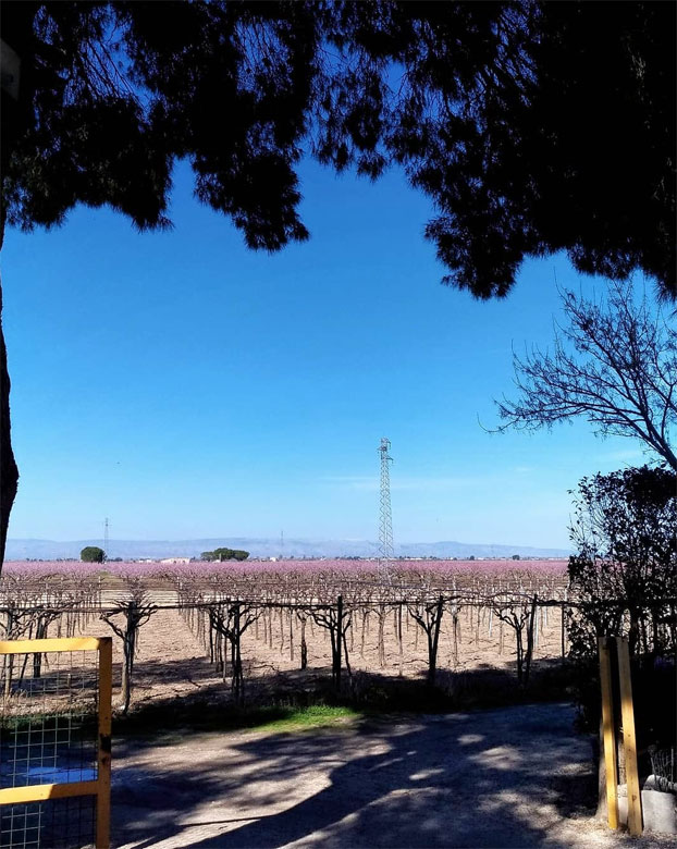 #ilmondodallamiafinestra: ecco l'Italia raccontata dalle vostre case nella quarta settimana di pandemia
