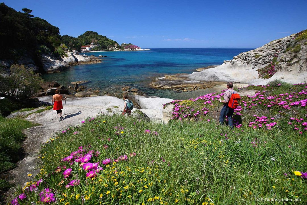 Borghi, spiagge e natura: le foto più belle dell'Isola d'Elba