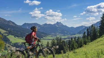 e-bike guida alla scelta della bicicletta elettrica a pedalata assistita