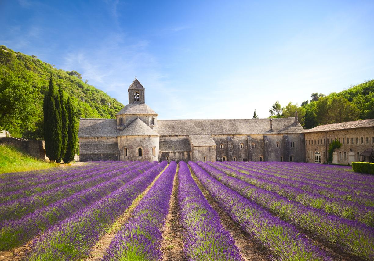 L'abbazia cistercense di Senanque, fondata nel 1148 e circondata dai campi di lavanda, che all'inizio dell'estate danno spettacolo con la loro prepotente fioritura (Istockphoto)