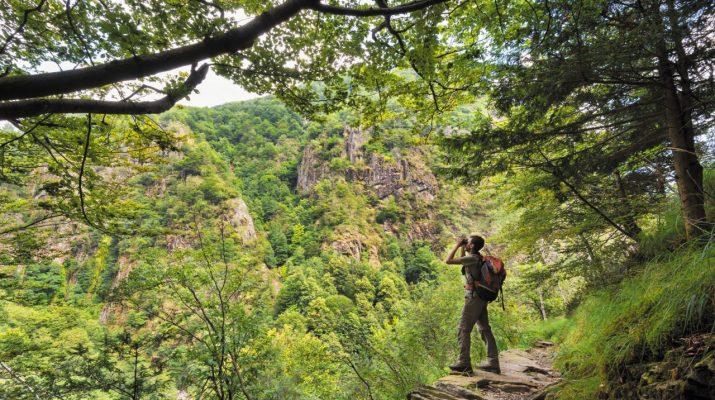 Foto Trekking in Val Grande: alla scoperta del Piemonte selvaggio