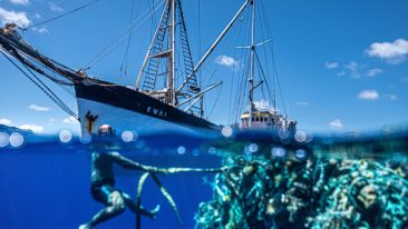 Raccolta record di plastica nell'Oceano Pacifico, realizzata dall'Ocean Voyage Institute