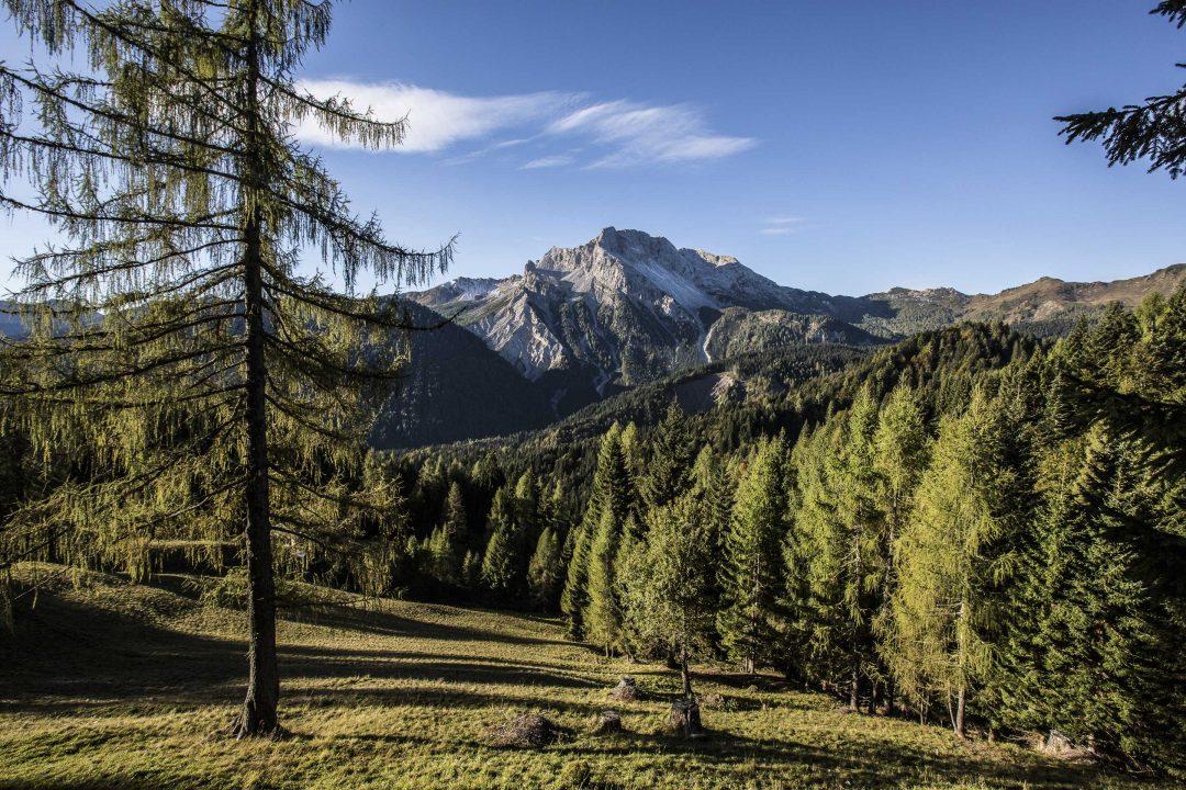 Friuli Venezia Giulia, un'estate in montagna: le foto