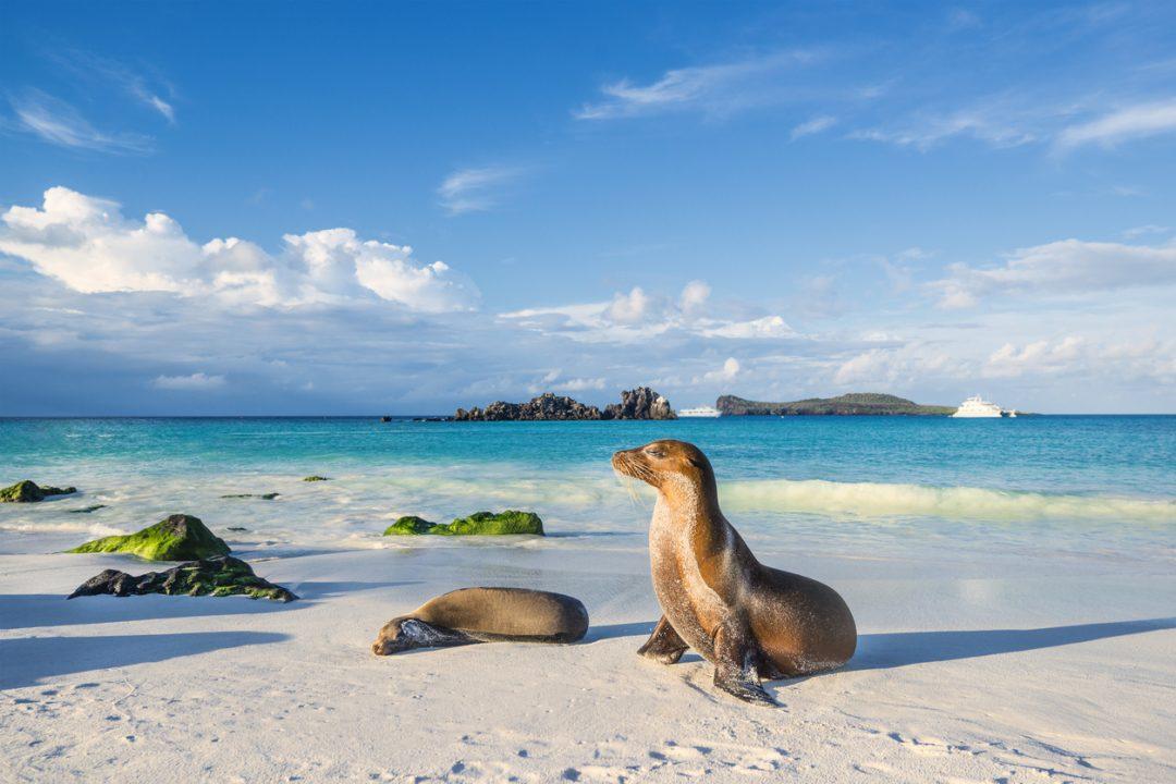 10° Galápagos, Ecuador