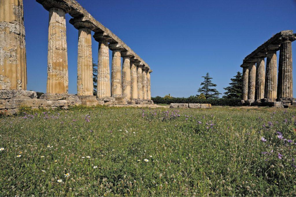 sito archeologico di Metaponto