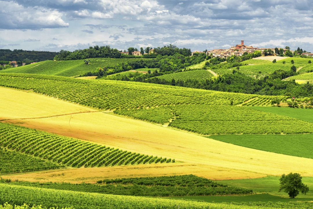 Sentieri gastronomici in Piemonte