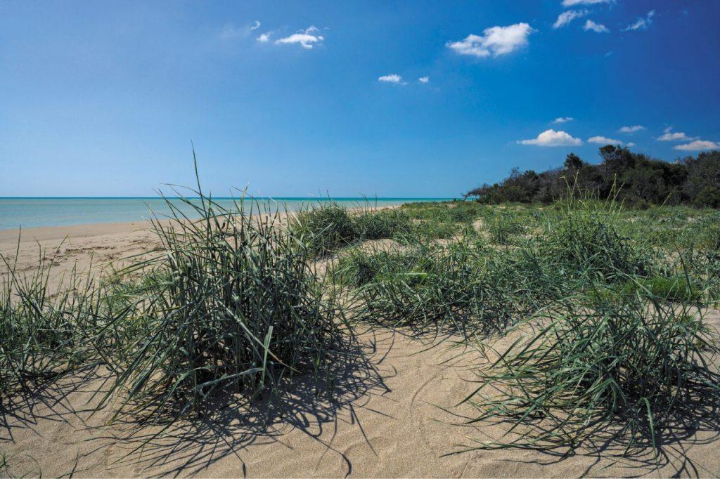 policoro-spiaggia di sabbia