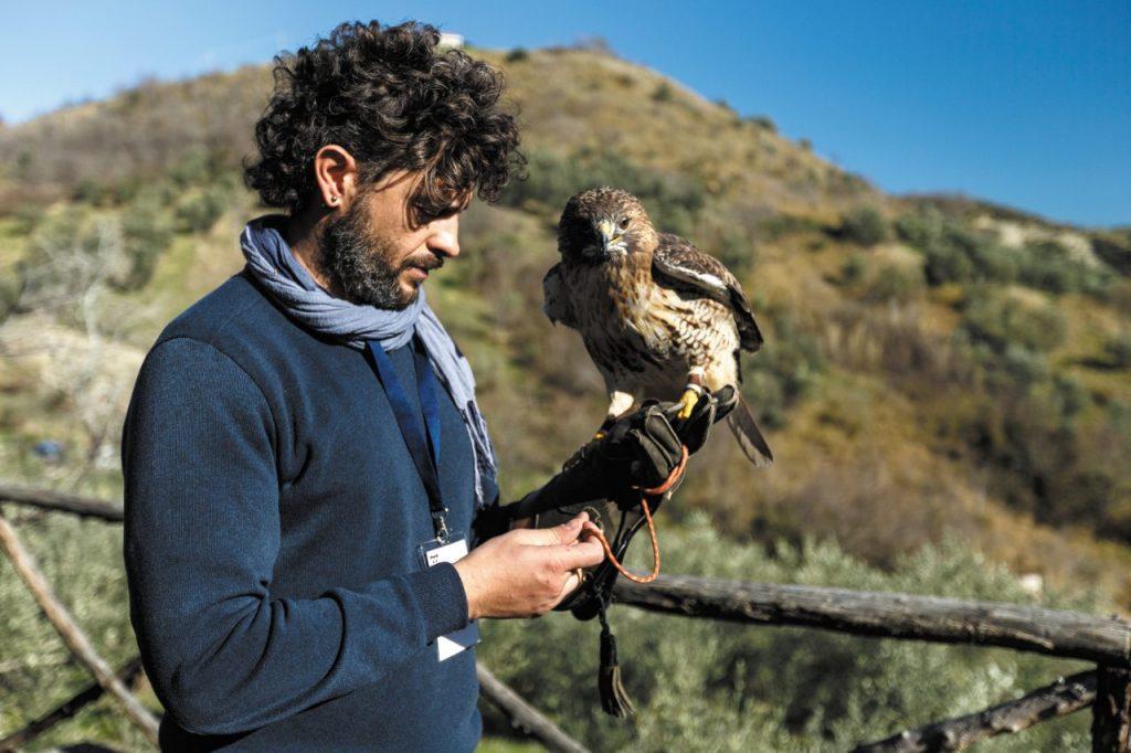 Il falconiere Maurizio Blasioli.
