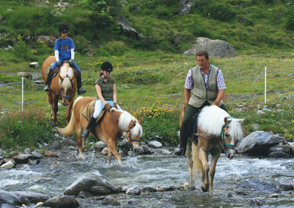 In sella ai cavalli avelignesi sui torrenti attorno a Moso in Passiria (foto copyright tourismusverein-passeiertal).