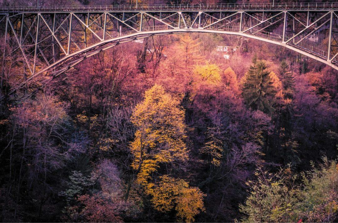 Treno del foliage: l'autunno dà spettacolo tra la Val Vigezzo e il Canton Ticino