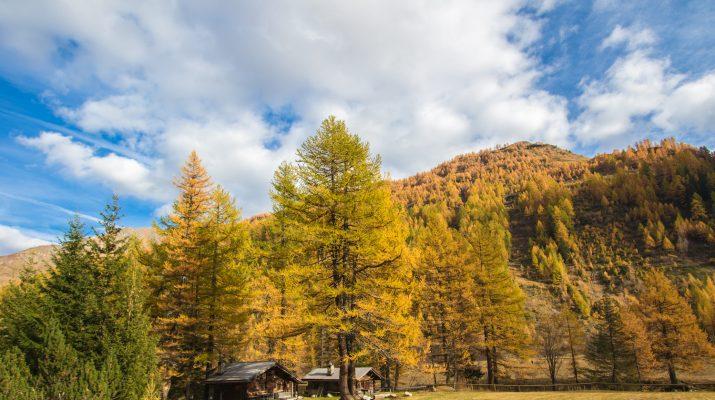 Foto Valle d'Aosta in autunno: lo spettacolare foliage di Courmayeur e dintorni