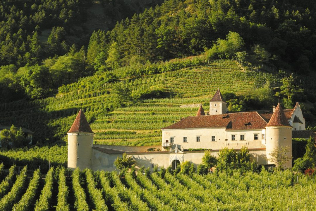 Il turismo del vino in Italia