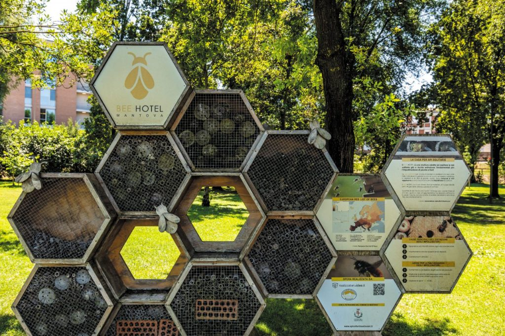 Bee Hotel a Mantova