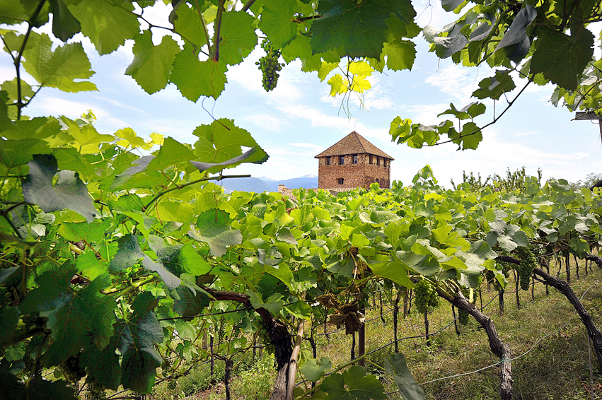 Alto Adige, gli hotel del buon vino