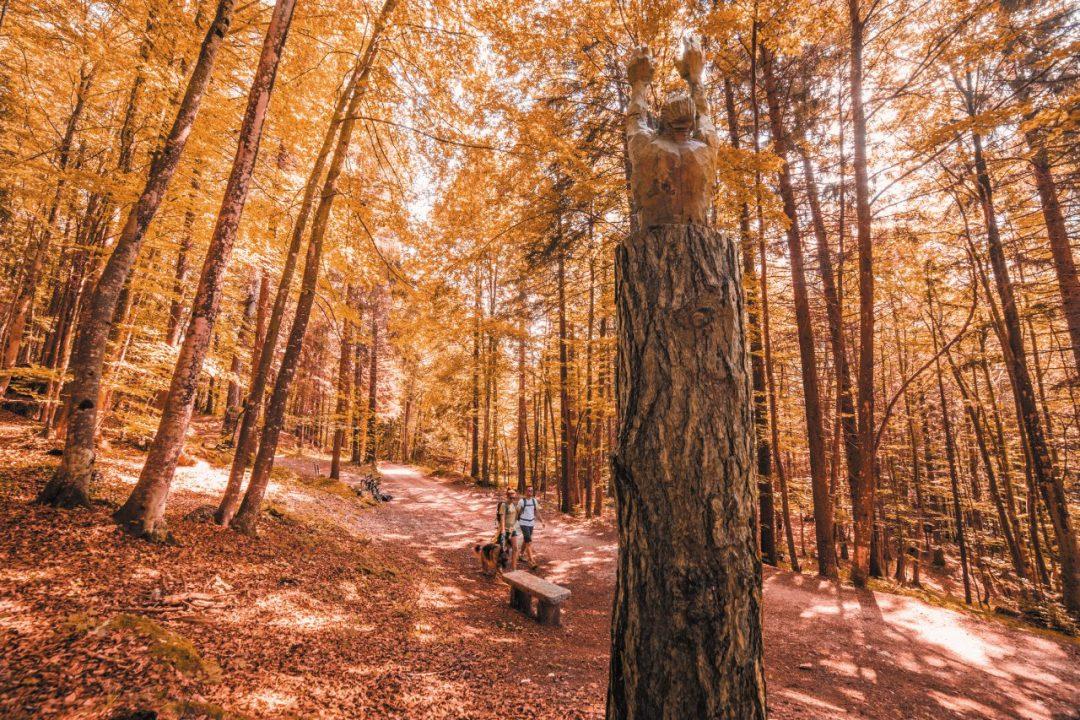 Yoga e mindfulness: la meditazione nella natura
