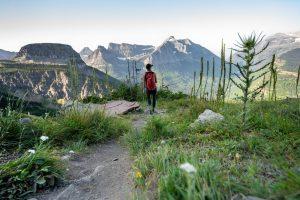Il fascino dei grandi parchi americani, da scoprire con i ranger del National Park Service