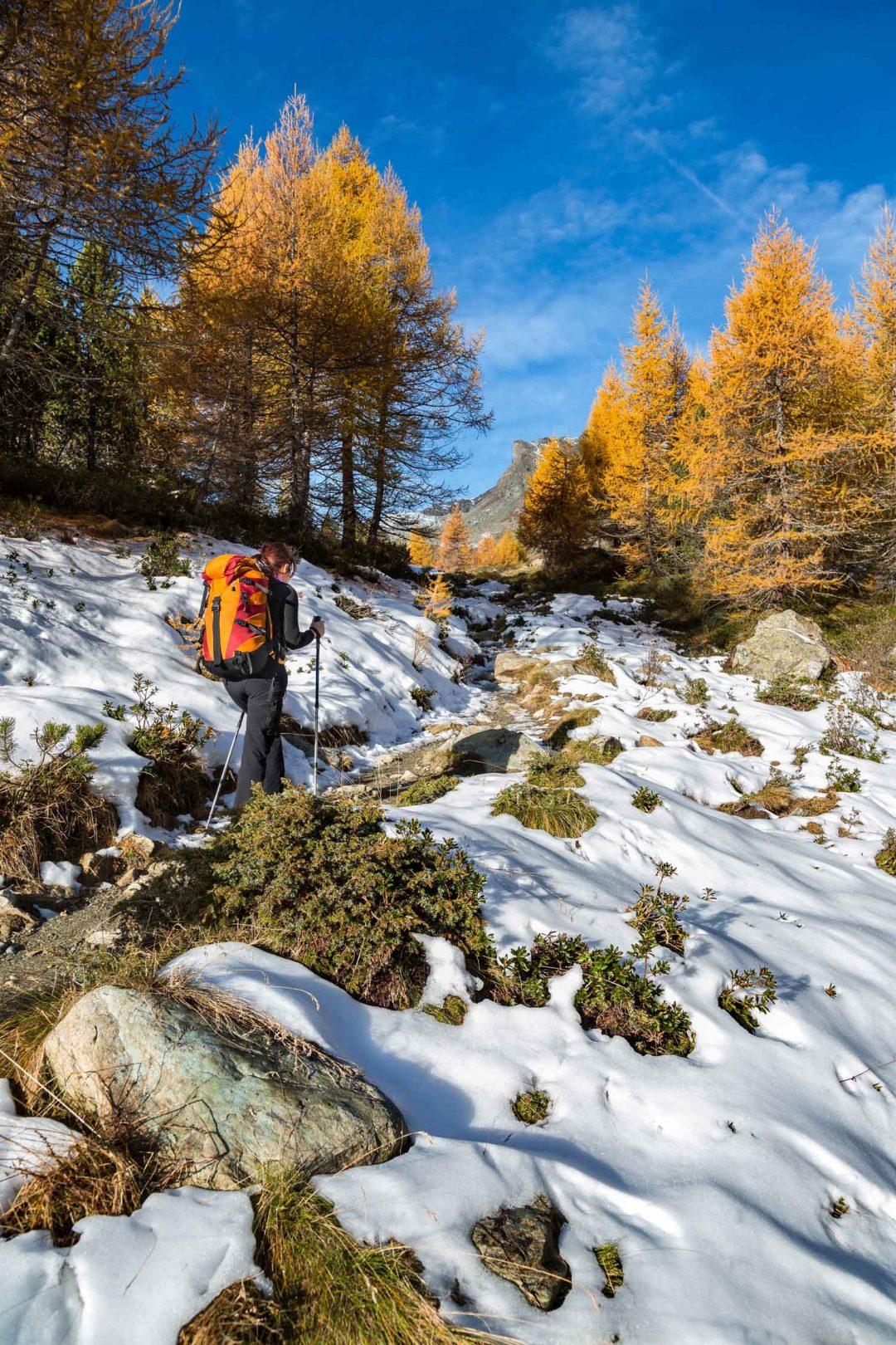 Parco naturale del Mont Avic