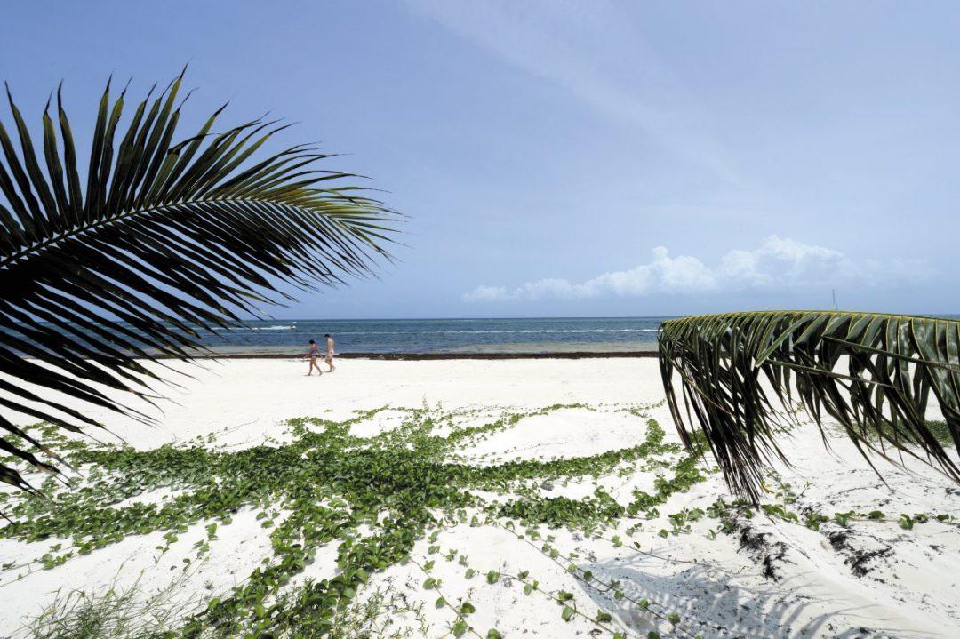 Viaggio nello Yucatán, tra spiagge candide e rovine Maya
